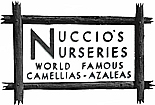 Growers of Camellias and Azaleas Since 1935